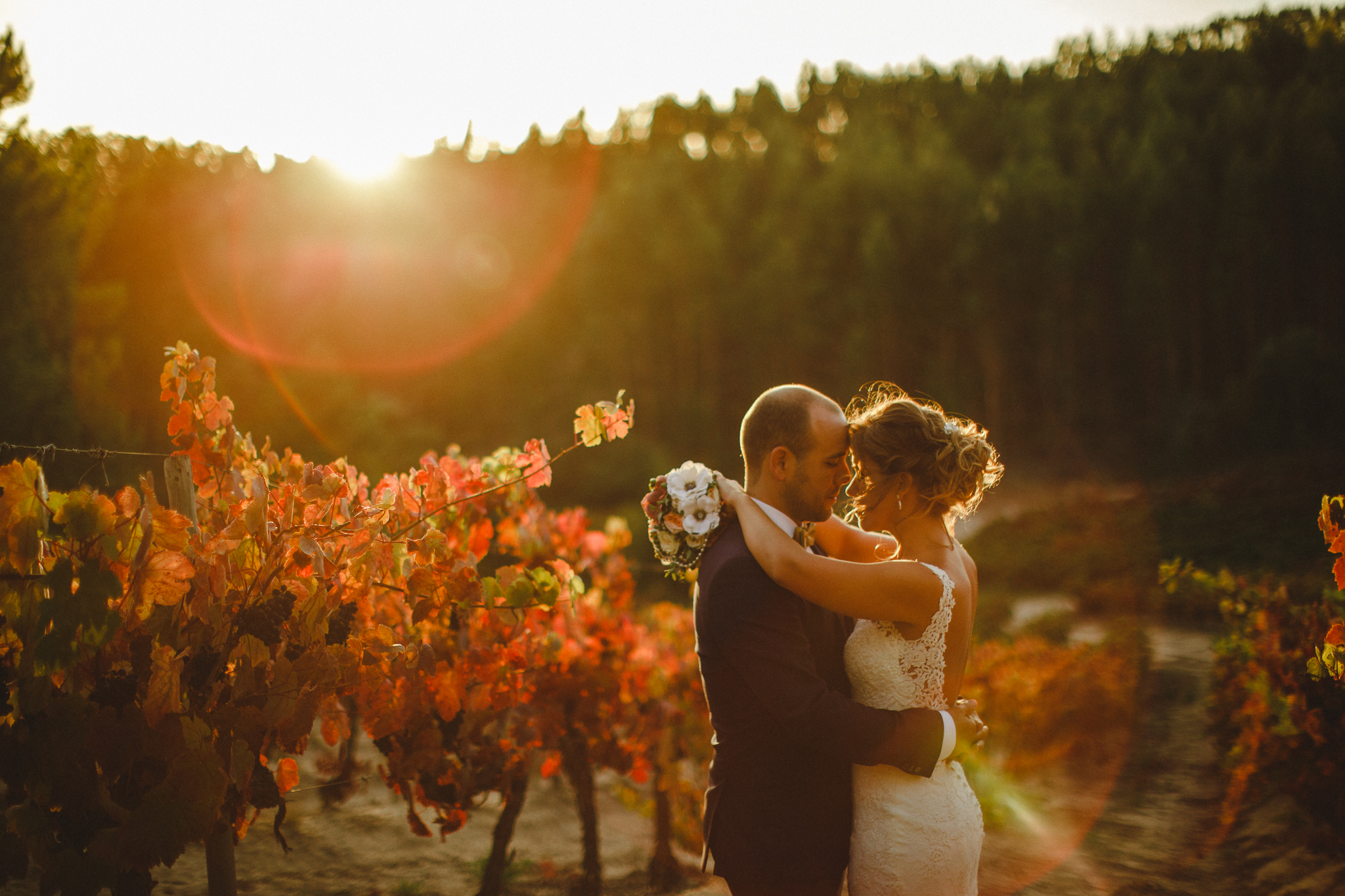 Bride and groom during their bridal photo shoot during sunset in the vineyards.