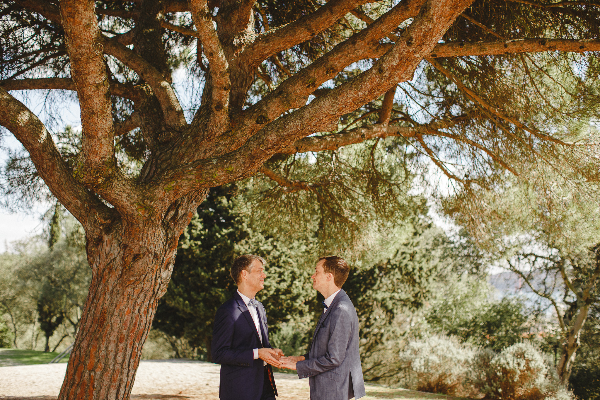 A couple stands under a tree touching hands after their wedding ceremony.